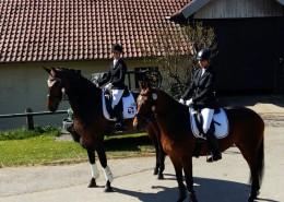 Christine und Cordula mit Pferden