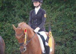 Ponymeisterschaften LB